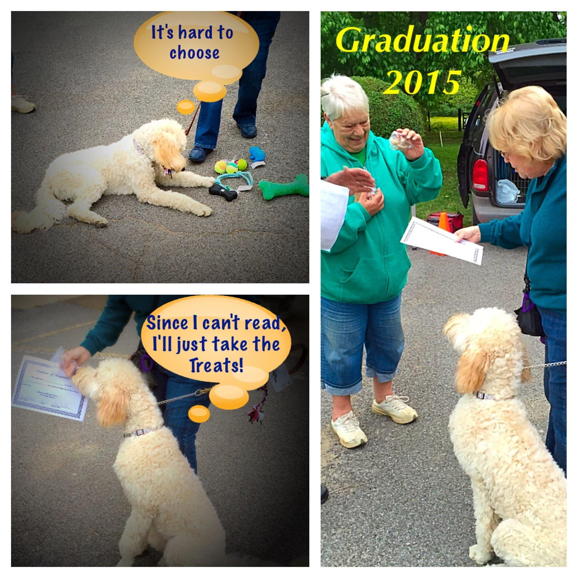 Beginning-Graduation